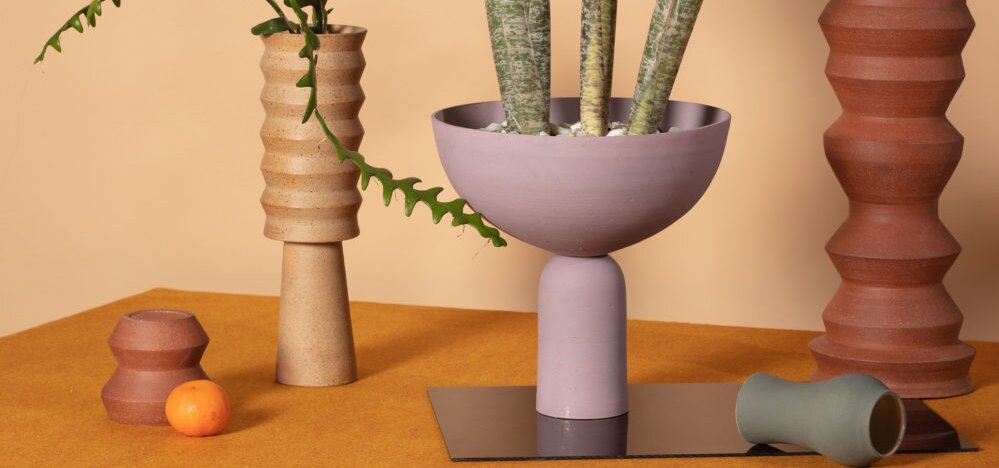 Caudex Studio vases and succulents