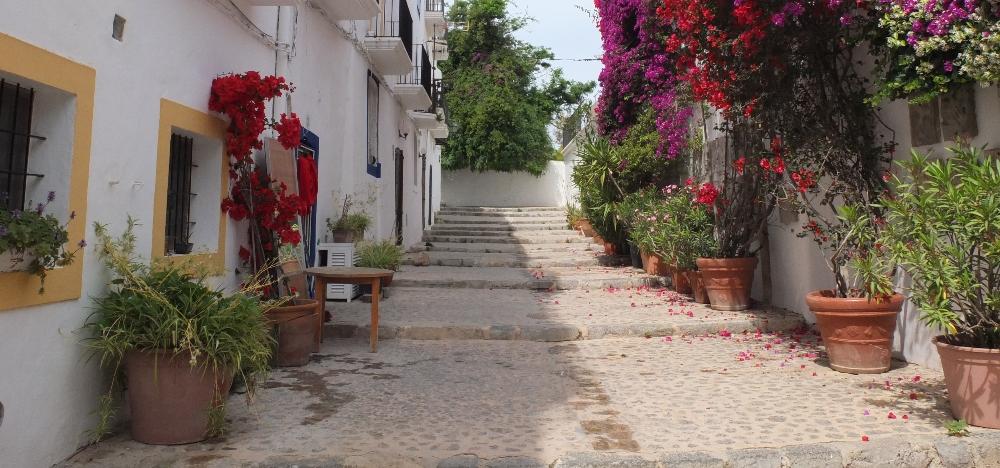 Ibiza streets, flowers